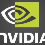 Fine Supporto Anche Per Le schede Video NVIDIA