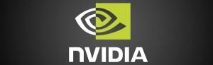 Fine Supporto schede Video NVIDIA